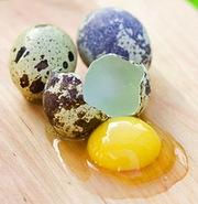 Перепелиные яйца по 40 копеек