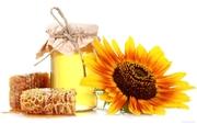 Закупаю мед оптом по высокой цене по всей Украине