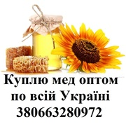 Покупаю мед оптом по высокой цене по все Украине