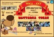 Всеукраинская выставка собак в Сумах 2020